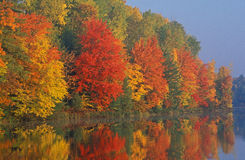 Rivage d'automne image stock