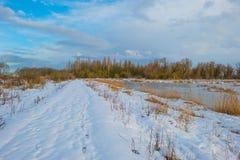 Rivage d'un lac congelé dans un domaine neigeux au soleil Image stock