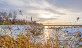 Rivage d'un lac congelé dans un domaine neigeux au soleil Photos stock