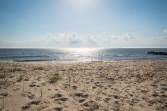 Rivage de baie de Delaware Photographie stock libre de droits
