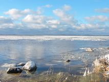Rivage de broche de Curonian en hiver, Lithuanie images stock