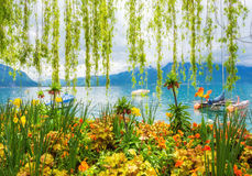 Rivage de fleur et montagnes, Montreux switzerland Photos stock