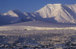 Rivage de l'Antarctique Images stock