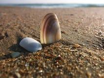 Rivage de la mer Photo libre de droits