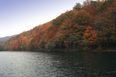 Rivage de lac photo stock