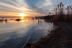 Rivage de lac au coucher du soleil, avec des arbres et des branches sortant du wate Photos stock