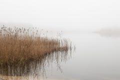 Rivage de lac avec le brouillard Photos stock