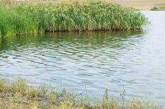 rivage de lacs Photos libres de droits