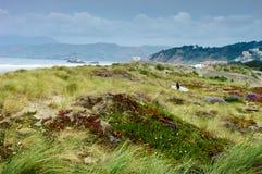Rivage de mer à San Francisco Photographie stock libre de droits