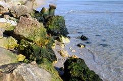 rivage de mer Image libre de droits
