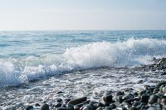 Rivage de pierres de mer Photo libre de droits