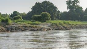 Rivage de rivière Photographie stock libre de droits