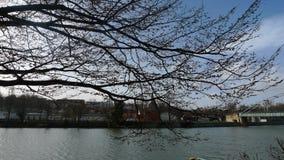 Rivage de rivière avec une ville dans un backround image libre de droits