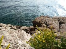 Rivage de Rocky Sea avec la mer bleue lisse à l'arrière-plan Photographie stock libre de droits