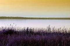 Rivage du lac photo stock