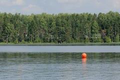 Rivage du lac Images libres de droits