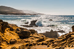 Rivage du nord de la Californie Photographie stock