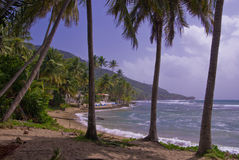 Rivage du sud, Porto Rico Photos stock
