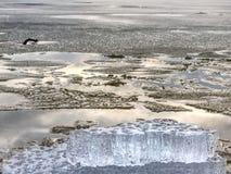 Rivage exposé sous la glace de fonte Fermez-vous vers le haut de la vue pour encadrer entre la glace et l'eau foncée image libre de droits
