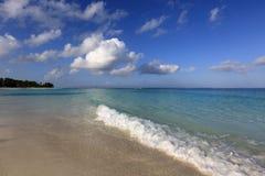 Rivage gentil d'océan au matin images libres de droits