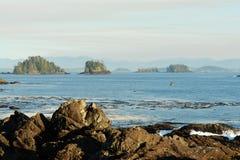 Rivage Pacifique Images libres de droits