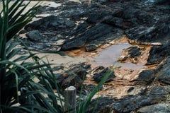 Rivage pierreux après marée basse L'eau dans les plaines Photographie stock libre de droits