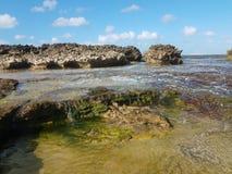 Rivage rocheux à la plage avec des tidepools à Isabela, Puerto Rico images libres de droits
