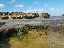 Rivage rocheux à la plage avec des tidepools à Isabela, Puerto Rico image stock