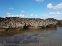 Rivage rocheux à la plage avec des tidepools à Isabela, Puerto Rico photos libres de droits