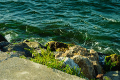 Rivage rocheux Images stock
