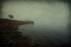 Rivage rocheux au brouillard Photographie stock