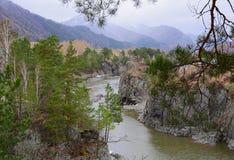 Rivage rocheux de la rivière de Katun avec les montagnes bleues image stock