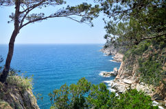 Rivage rocheux de mousse de la mer Méditerranée Photos stock