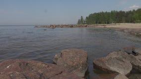 Rivage rocheux du jour d'été du golfe de Finlande banque de vidéos