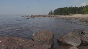 Rivage rocheux du jour d'été du golfe de Finlande clips vidéos