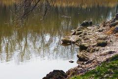 Rivage rocheux par le lac Images libres de droits