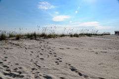 Rivages de Golfe Photographie stock libre de droits