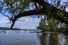 Rivages de lac Maggiore avec les usines, le soleil et les bateaux Photo stock