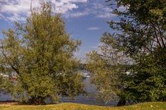 Rivages de lac Maggiore avec les usines, le soleil et les bateaux Photographie stock