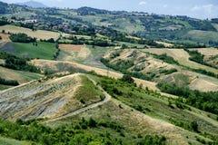 Rivalta di Lesignano Parma, Italia: paesaggio di estate immagini stock