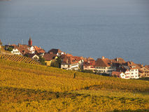 Village in Lavaux, Wine Region In Switzerland Royalty Free Stock Images