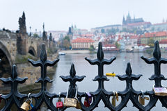 Rive de Prague avec des serrures de l'amour Photographie stock libre de droits