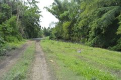 Rive de Tiguman chez Tiguman barangay, ville de Digos, Davao del Sur, Philippines image libre de droits
