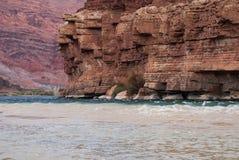 Rive rocciose del fiume Colorado Fotografie Stock
