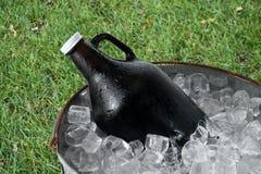 Rivelatore di cortocircuiti della birra in secchiello del ghiaccio immagine stock libera da diritti