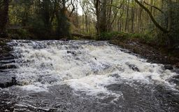 Rivelin valley. Rivelin  valley Sheffield Royalty Free Stock Photography