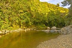 Rivendell, Kaitoke Regional Park, New Zealand Stock Image