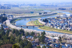 River's Bank of Cherry Trees. Hinokinaigawa River's Bank of Cherry Trees, Kakunodate, Akita, Japan Stock Image