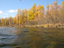 River. (Autumn  in wildness Stock Photos