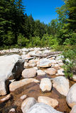 River. A shallow river filled with large rocks Royalty Free Stock Photos